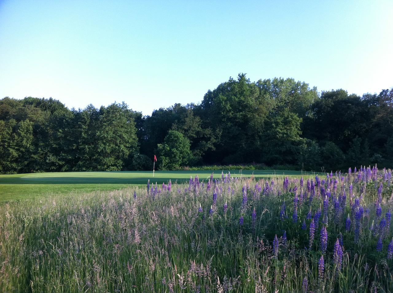 Golfclub Castrop-Rauxel e.V. in Frohlinde Ansichten